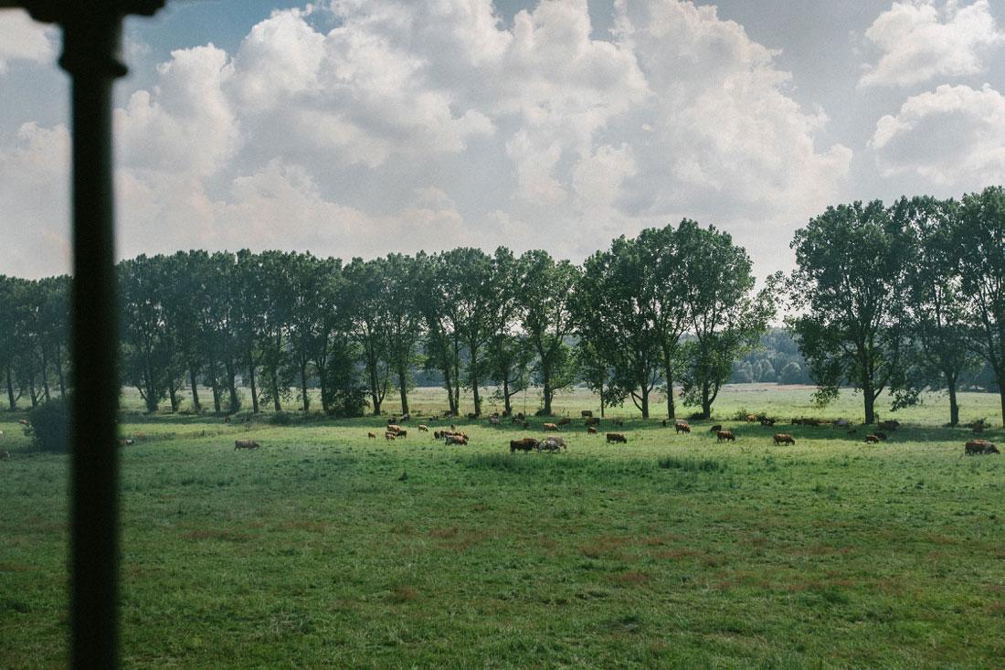 Landhochzeit